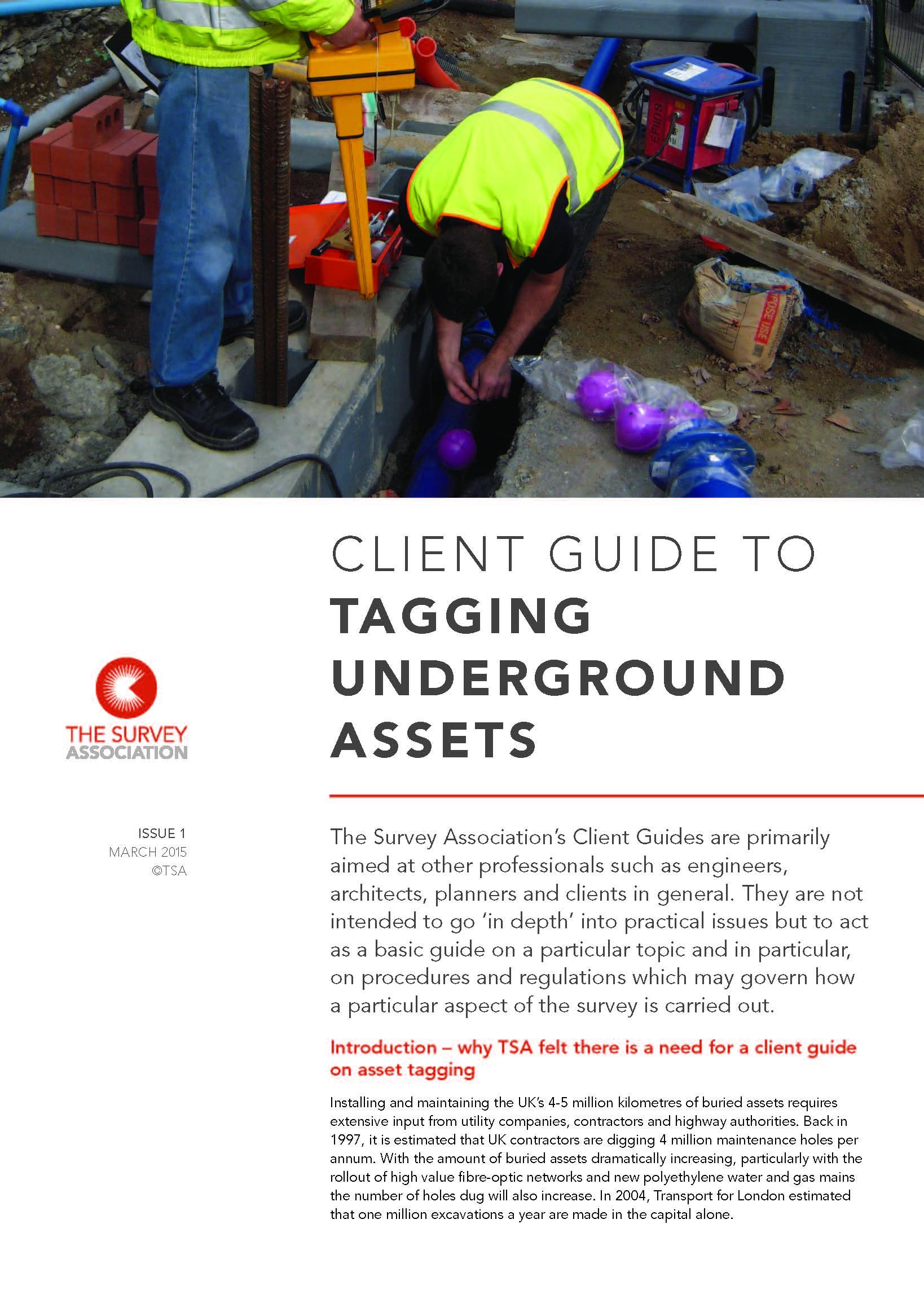 New TSA Client Guide – Asset Tagging