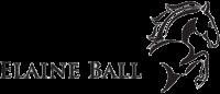 Elaine Ball Technical Marketing Ltd